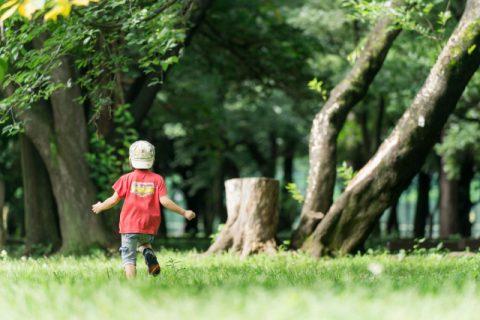 芝生で走り回る男の子