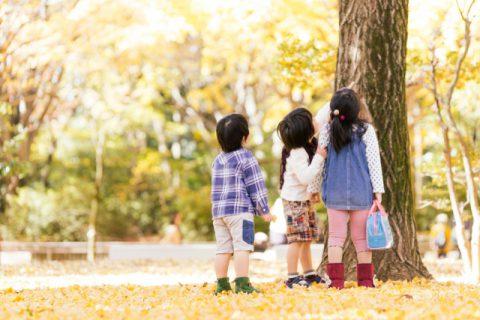 2歳児の特徴の理解が重要!発達と保育のポイントは?
