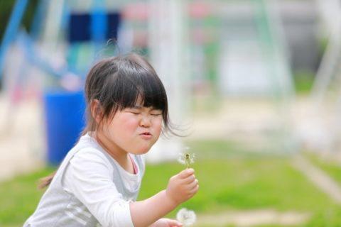2歳児の特徴と発達のまとめ【言葉と遊びと基本的生活習慣の成長】
