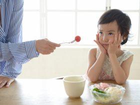 子供の食べ物の好き嫌いが多い原因と指導方法!好きにする魔法の言葉