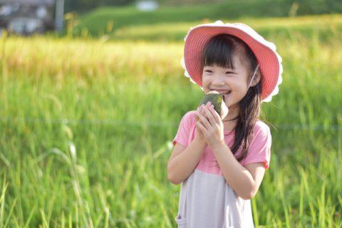 田んぼでおにぎりを食べる女の子