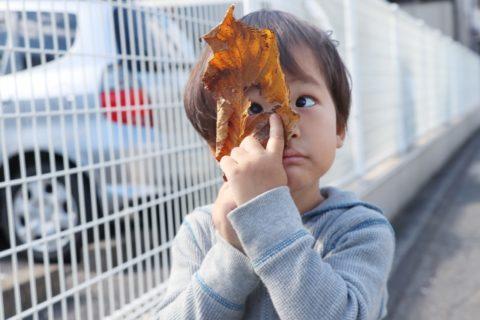 穴の開いた落ち葉をのぞく少年