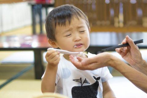 子供がご飯食べないときもイライラしない【1歳と2歳は食べムラあり】