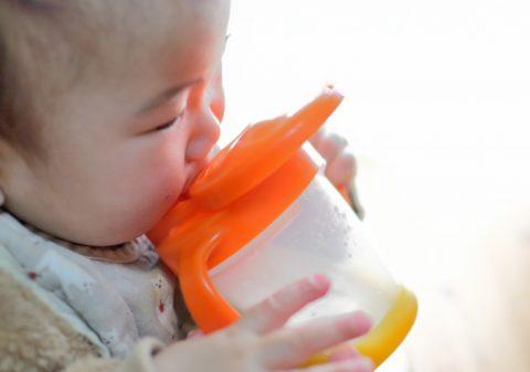 マグで麦茶を飲む赤ちゃん