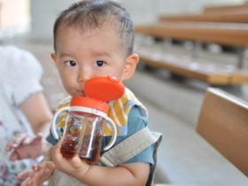 麦茶をマグで飲む赤ちゃん