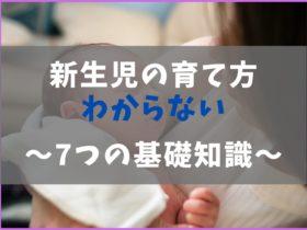 新生児の育て方がわからないの解説書【スケジュールの基本と育児】